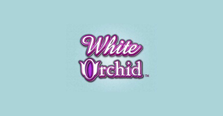 white orchid slot by IGT